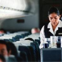 Alejandra Barrales: Una historia de altos vuelos, corrupción y amnesia