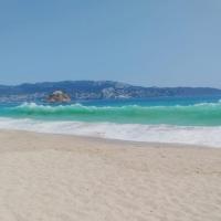 Limpias y sin turistas: las increíbles imágenes de las playas de #Acapulco en plena Semana Santa.